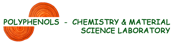 POLYPHENOLS CHEMISTRY & MATERIAL SCIENCE